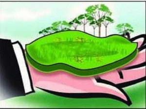 Gurugram: 850 allottees to get plots after decades